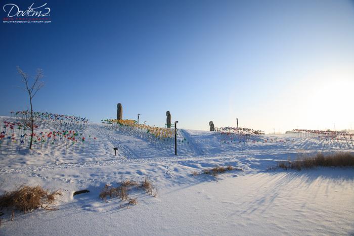 파주 평화누리공원 겨울.PNG