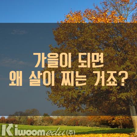 가을 살.png